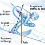 Le skieur est freiné par deux forces : la force de traînée aérodynamique, c'est-à-dire la résistance de l'air, et la force due au frottement du ski sur la neige. La traînée aérodynamique est proportionnelle au carré de la vitesse, la force de frottement est proportionnelle à la composante du poids perpendiculaire à la surface de contact. Les intensités de ces deux forces sont souvent comparables. (Dessins de Bruno Vacaro)